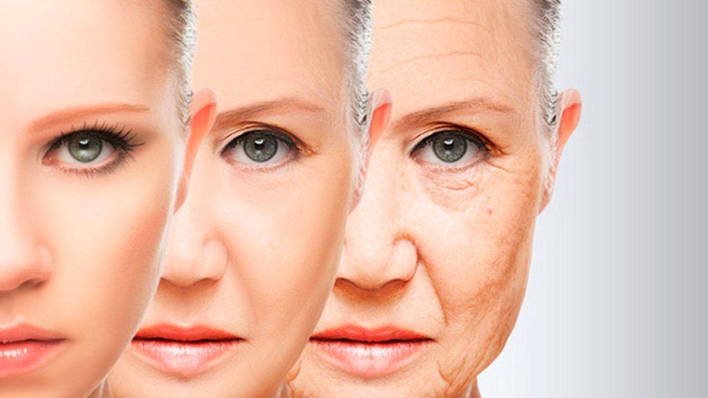 envejecimiento y colageno