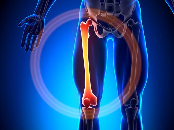 colageno y los huesos