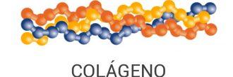 Proteína de colágeno hidrolizado